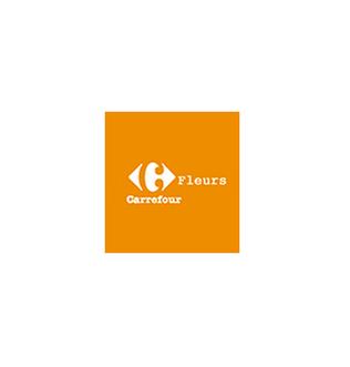 Carrefour Voyages Services centre commrercial Grand Quetigny